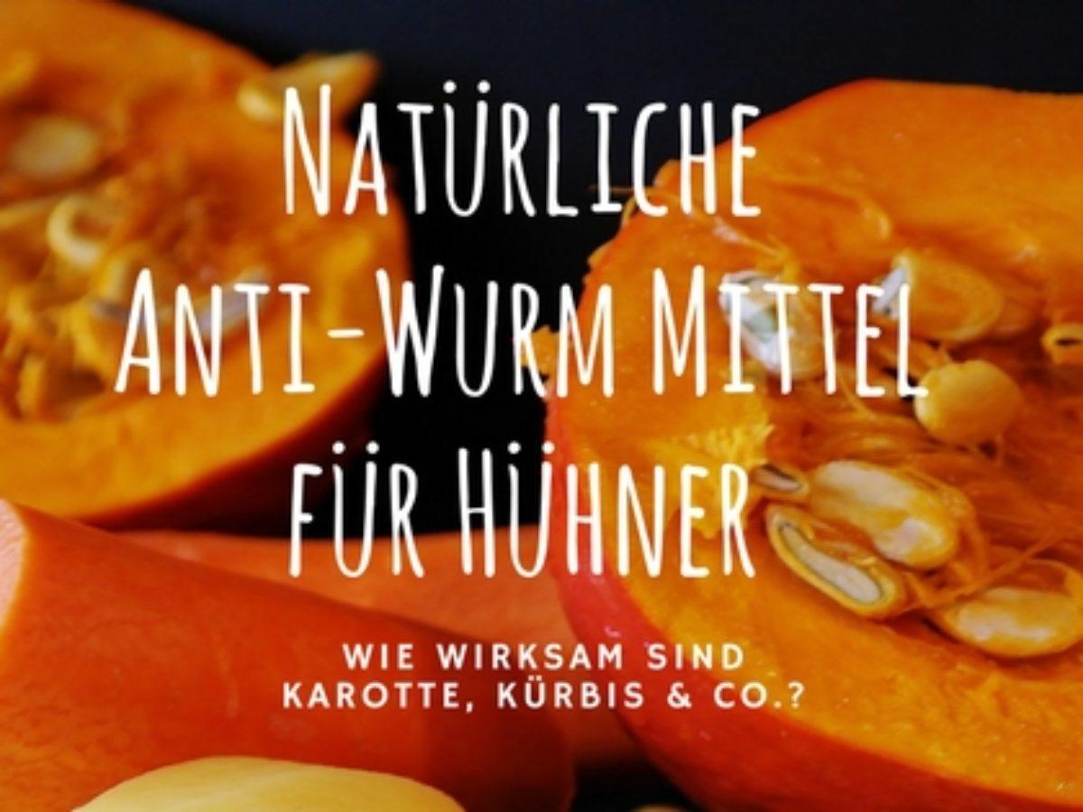 hausmittel gegen würmer bei menschen