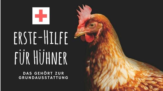 Hühner Medikamente – was gehört in die Grundausstattung?