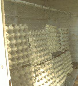 Schallschutz vor der Sitzstange im Hühnerstall