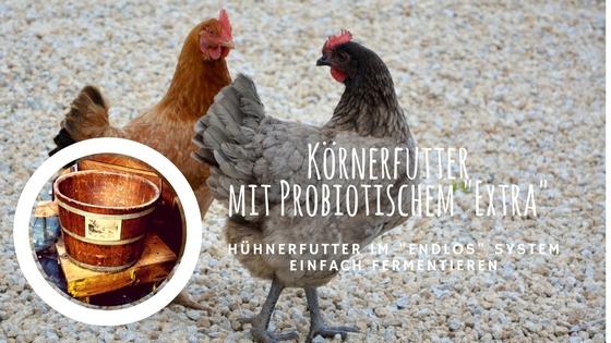 Hühnerfutter einfach fermentieren