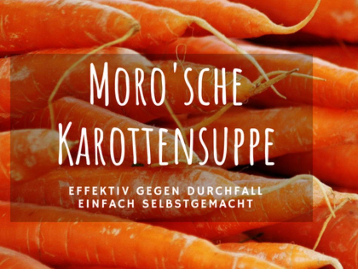 Morosche suppe hund